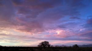 sunset000